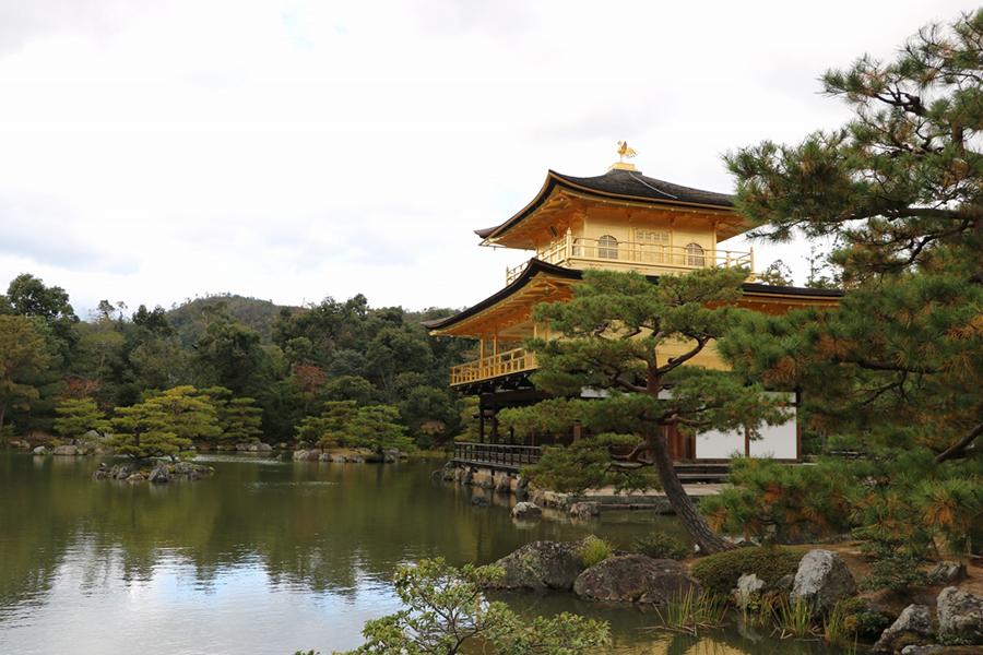 Japan (Tinus Botha)