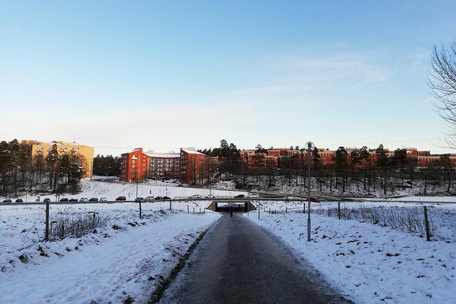 Lappkärrsberget (Lappis)